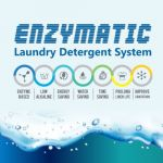 ENZYMATIC BROCHURE
